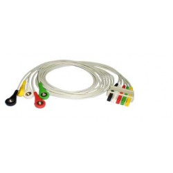 Cable Terminal ECG 5 Derivadas